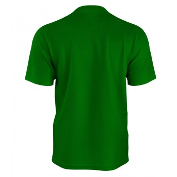 Boston Celtics Tshirt
